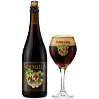 https://bierimport.nl/wp-content/uploads/2018/04/BierImport_Lupules_2.jpg